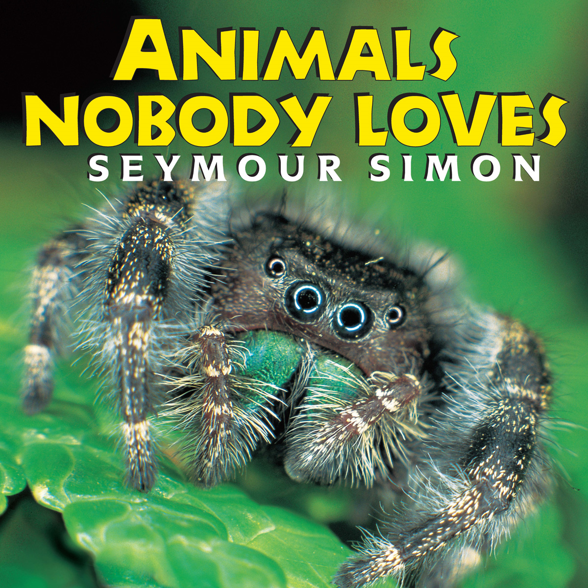 Animals Nobody Loves By: Seymour Simon