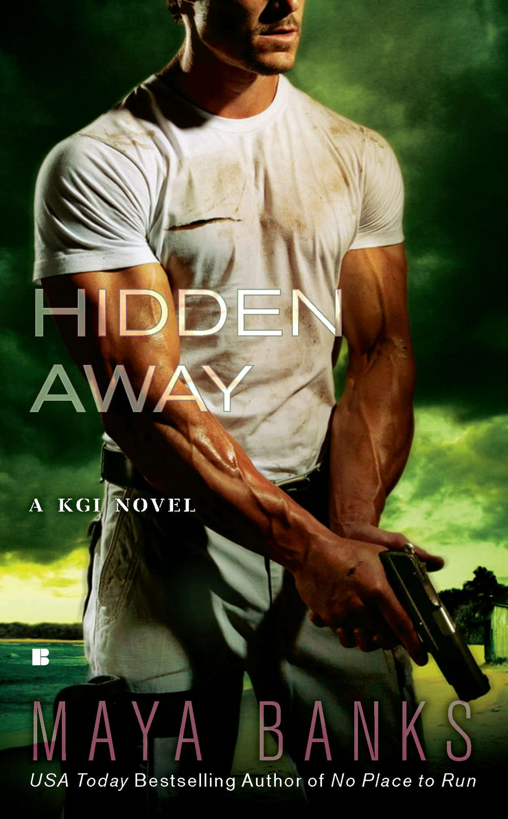Hidden Away By: Maya Banks