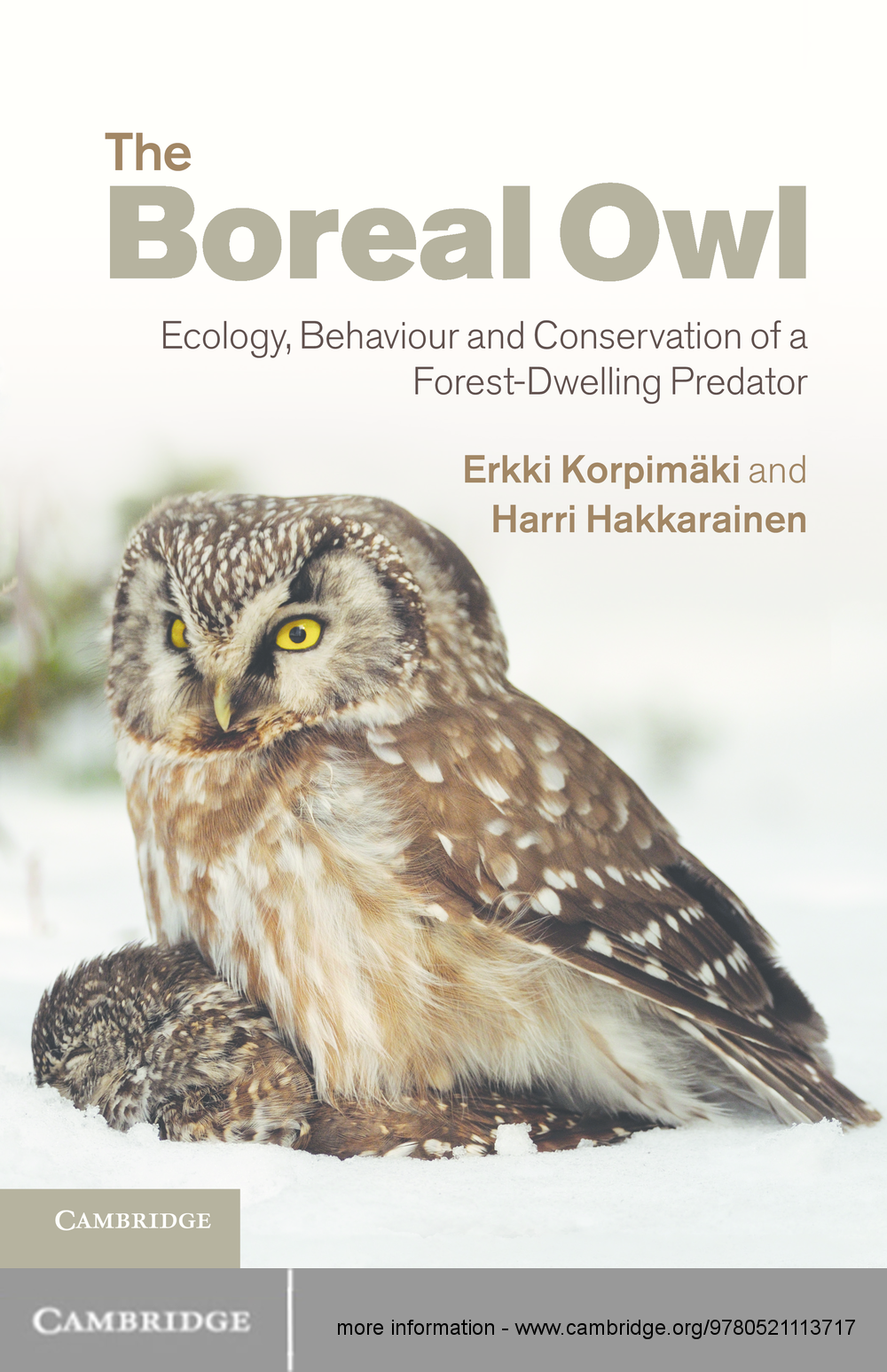 The Boreal Owl Ecology,  Behaviour and Conservation of a Forest-Dwelling Predator