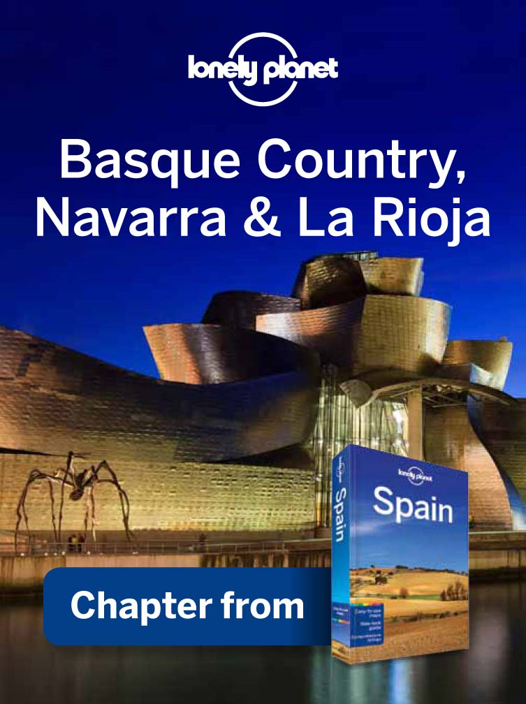 Lonely Planet Basque Country,  Navarra & La Rioja Chapter from Spain Travel Guide
