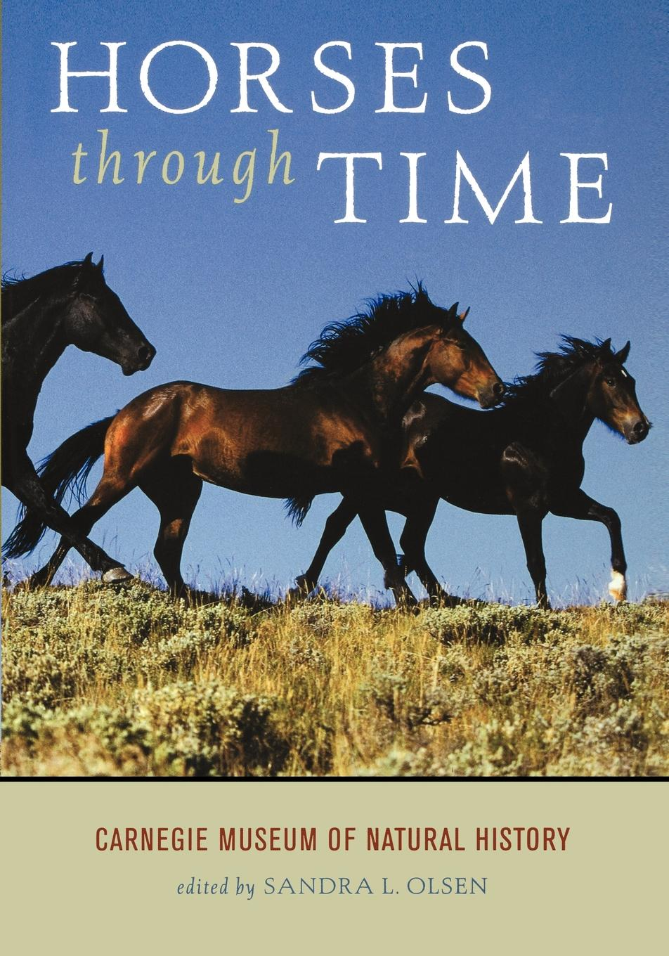 Horses through Time By: