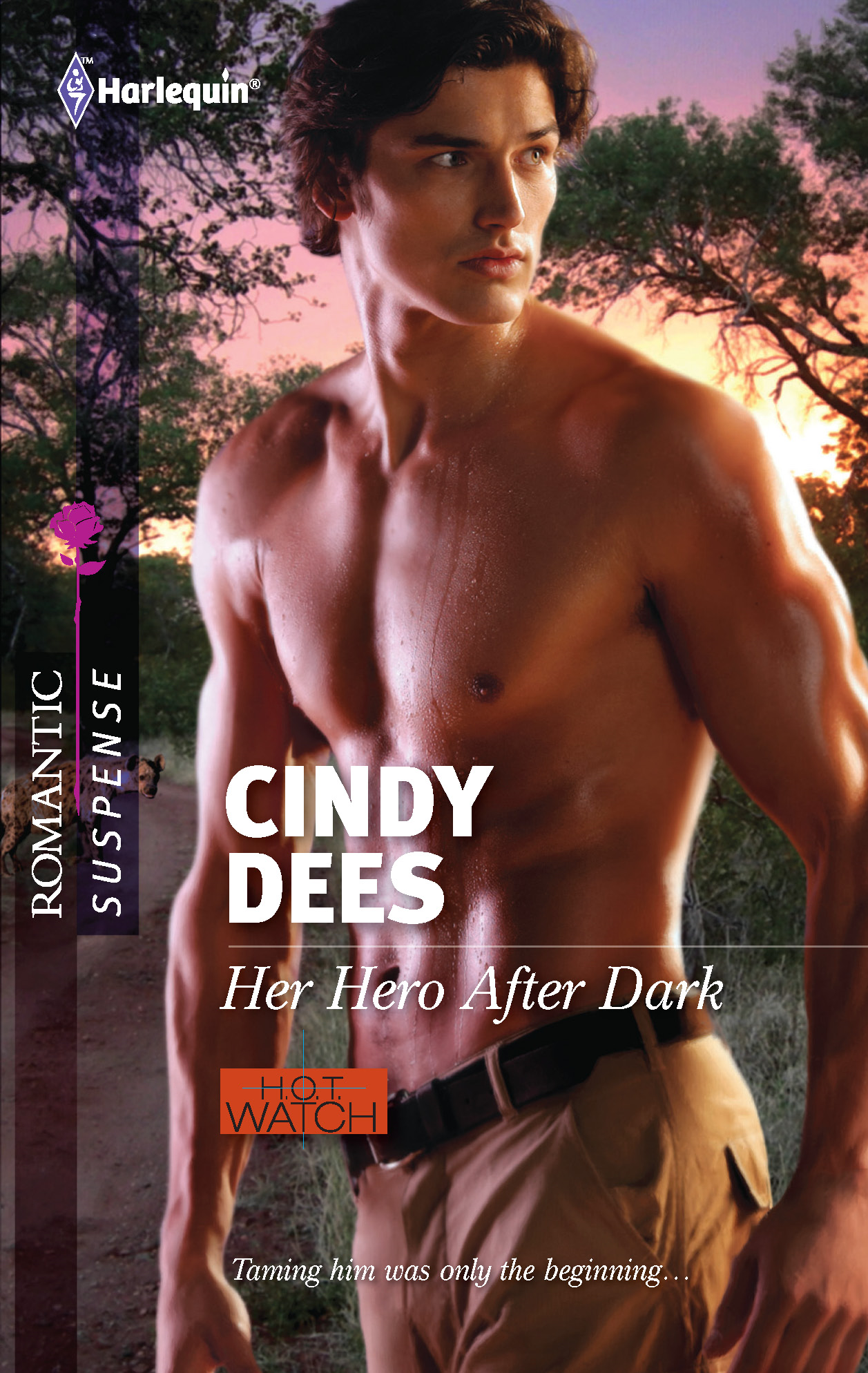 Her Hero After Dark By: Cindy Dees