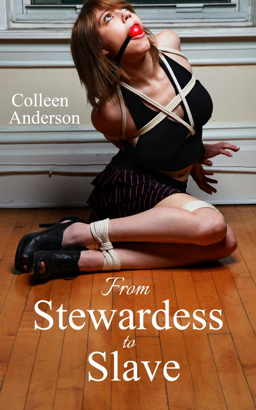 From Stewardess to Slave (Rape Erotica and Forced Sex, #2) By: Colleen Anderson