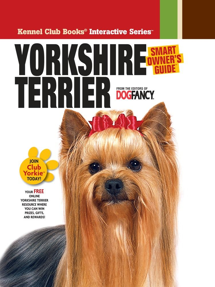 Yorkshire Terrier By: Dog Fancy Magazine