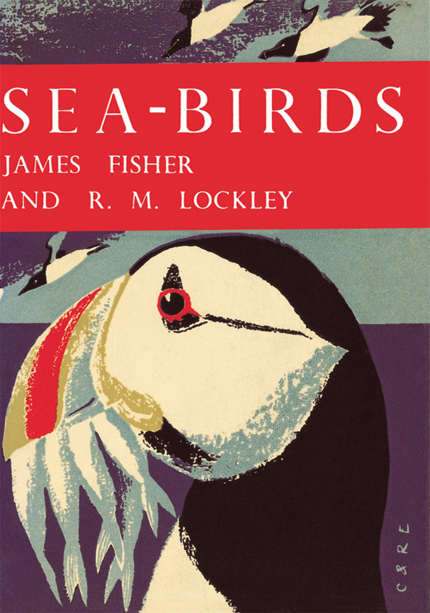 Sea-Birds (Collins New Naturalist Library,  Book 28)