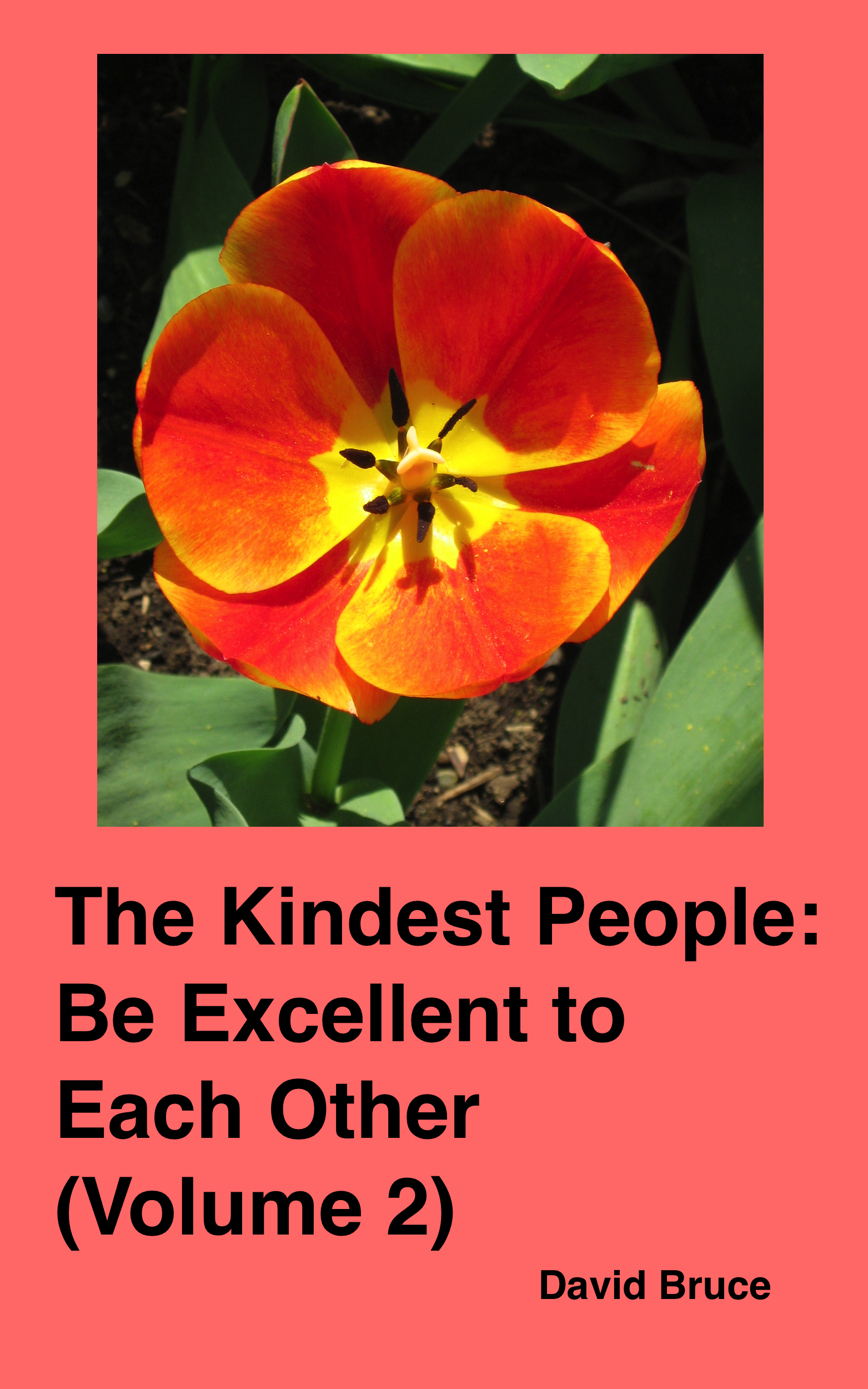 The Kindest People: Be Excellent to Each Other (Volume 2)