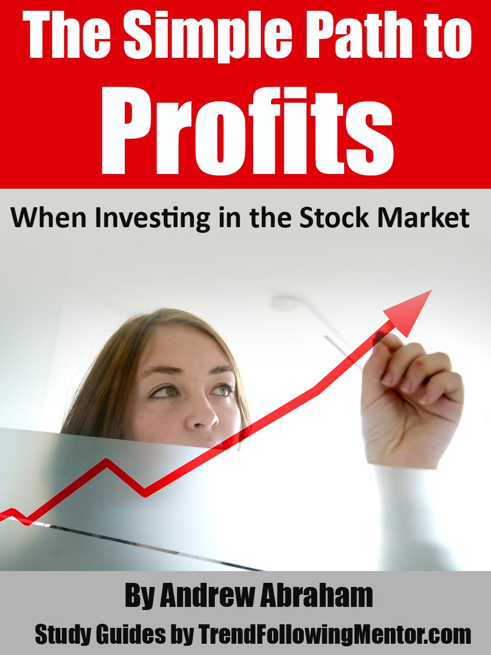 Paths of Profits When Investing in the Stock Market