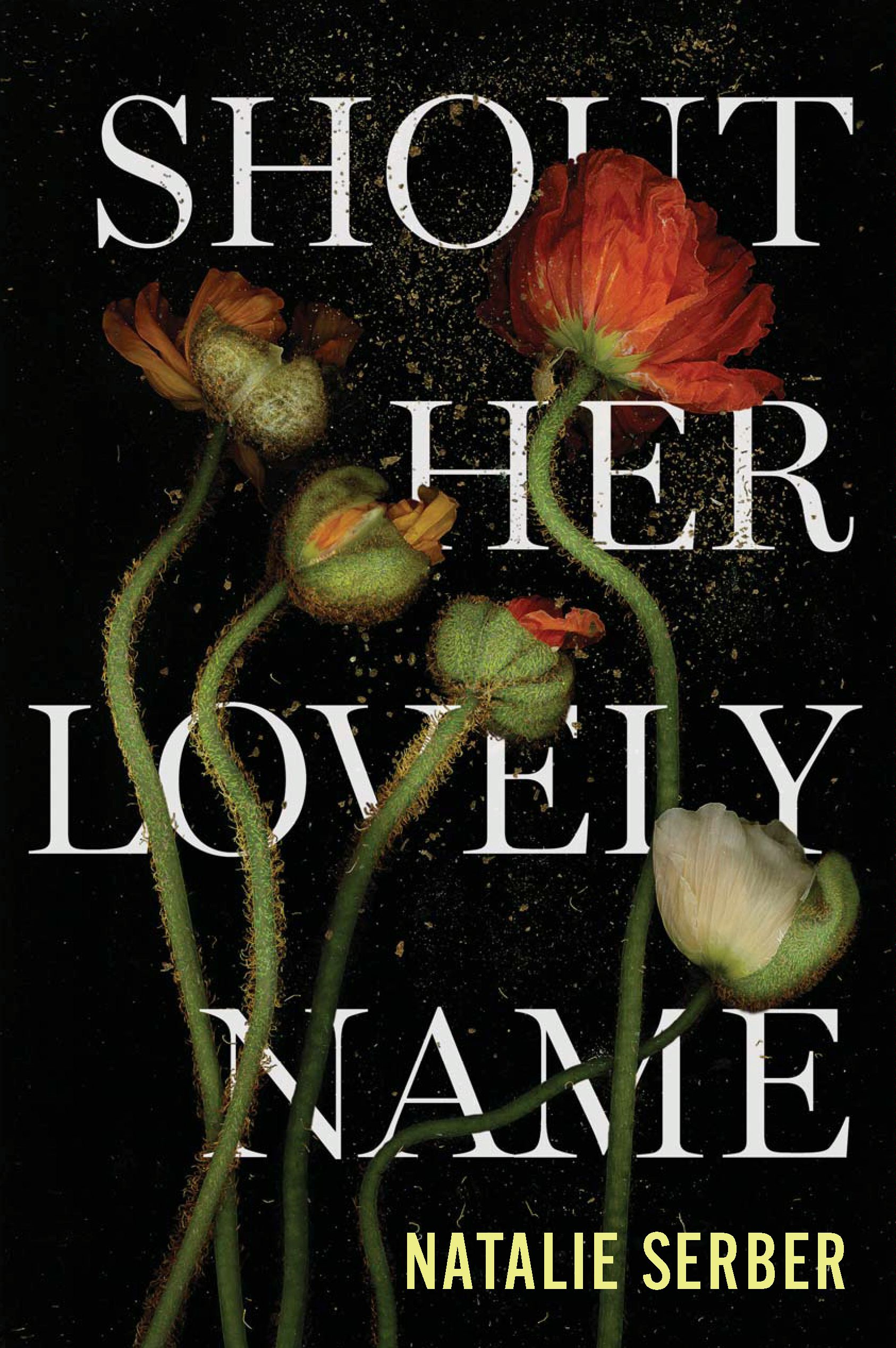 Shout Her Lovely Name By: Natalie Serber