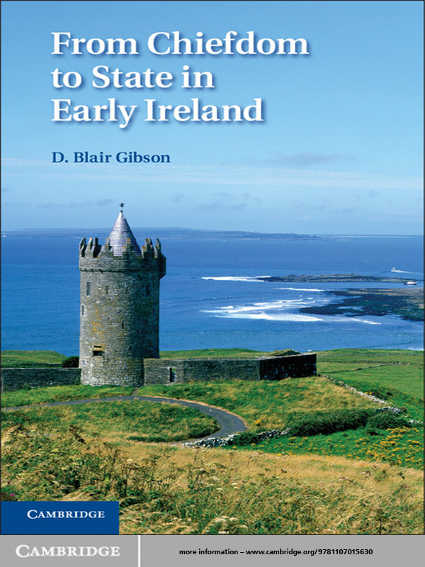 From Chiefdom to State in Early Ireland