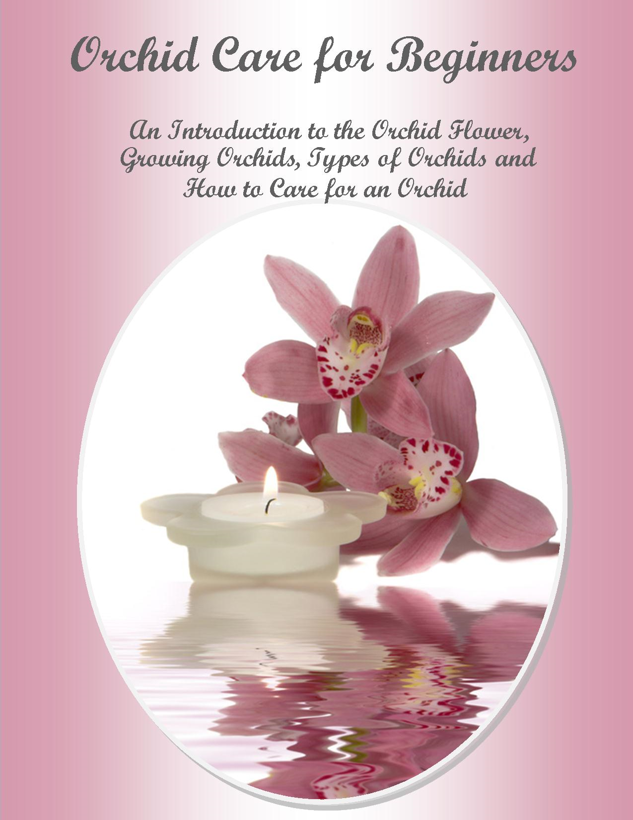 Orchid Care  for Beginners  An Introduction to the Orchid Flower, Growing Orchids, Types of Orchids and How to Care for an Orchid