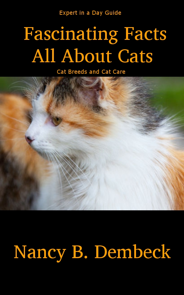 Fascinating Facts All About Cats