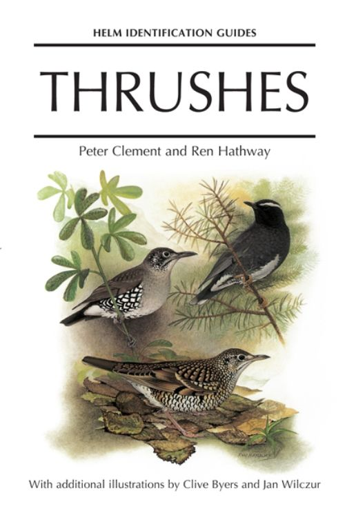 Thrushes By: Peter Clement Ren Hathway