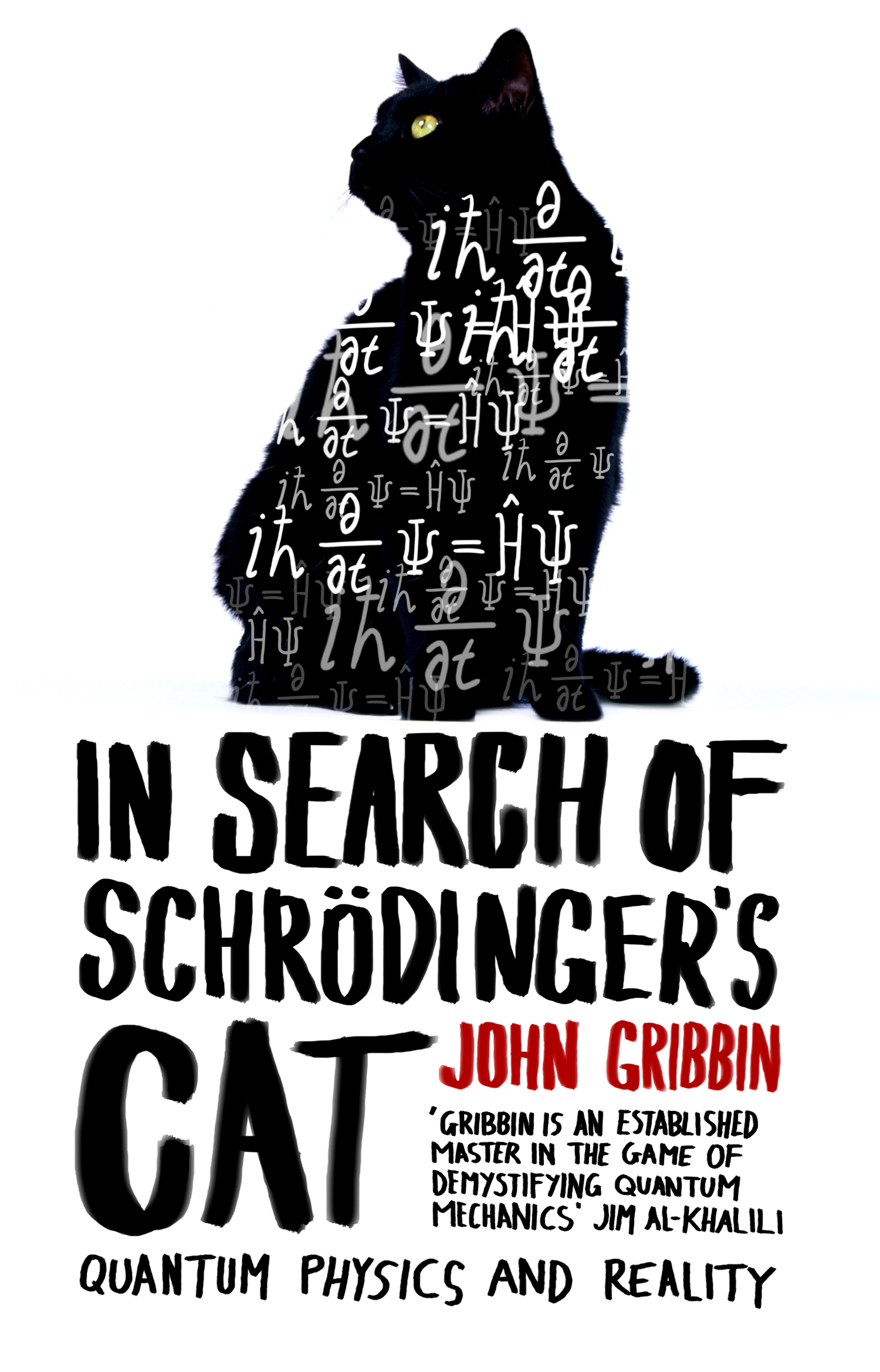 In Search Of Schrodinger's Cat Updated Edition