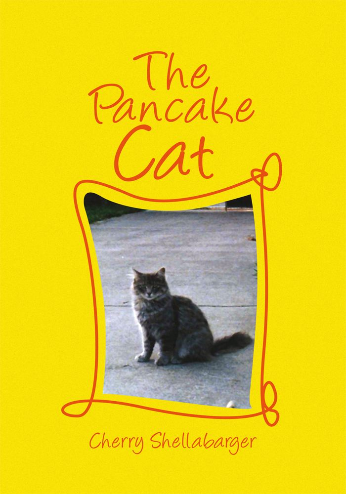 THE PANCAKE CAT