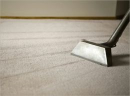 The Essential Guide to Carpet Cleaning Like a Pro
