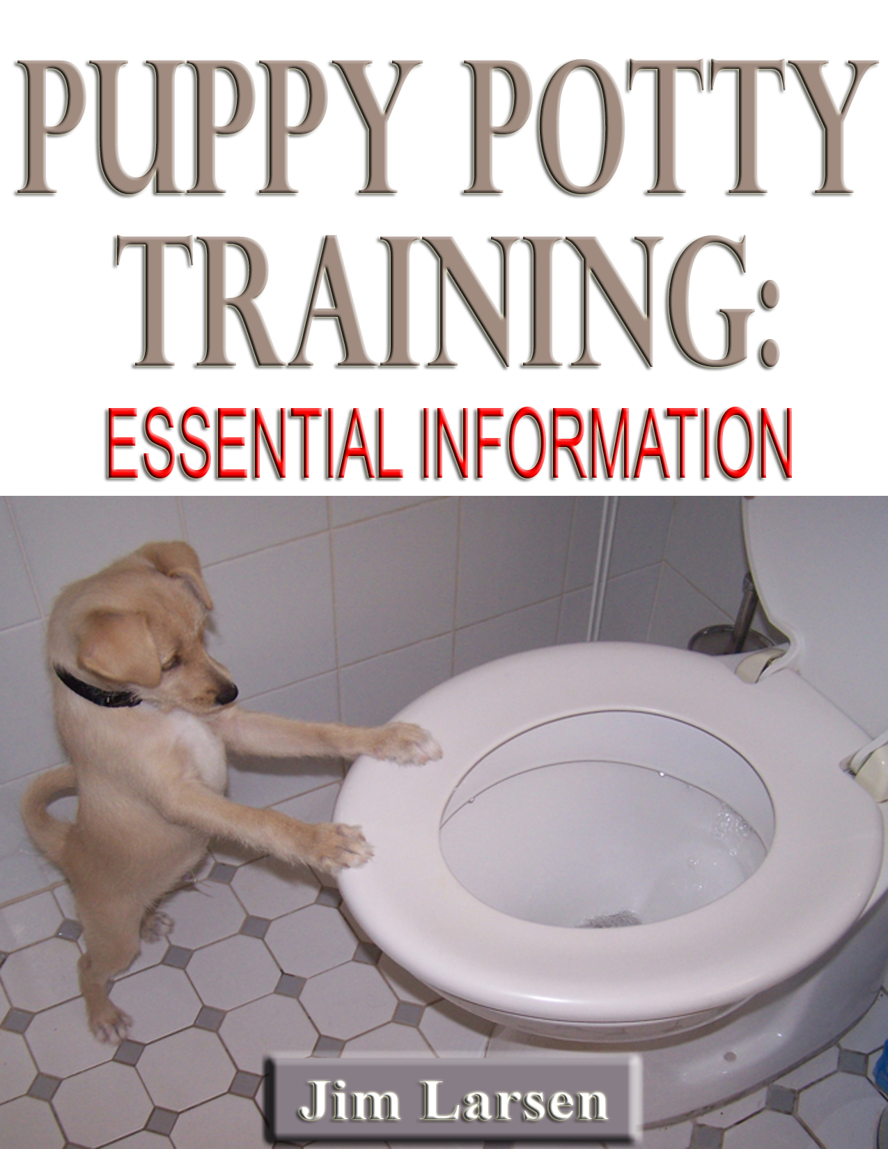 Puppy Potty Training: Essential Information
