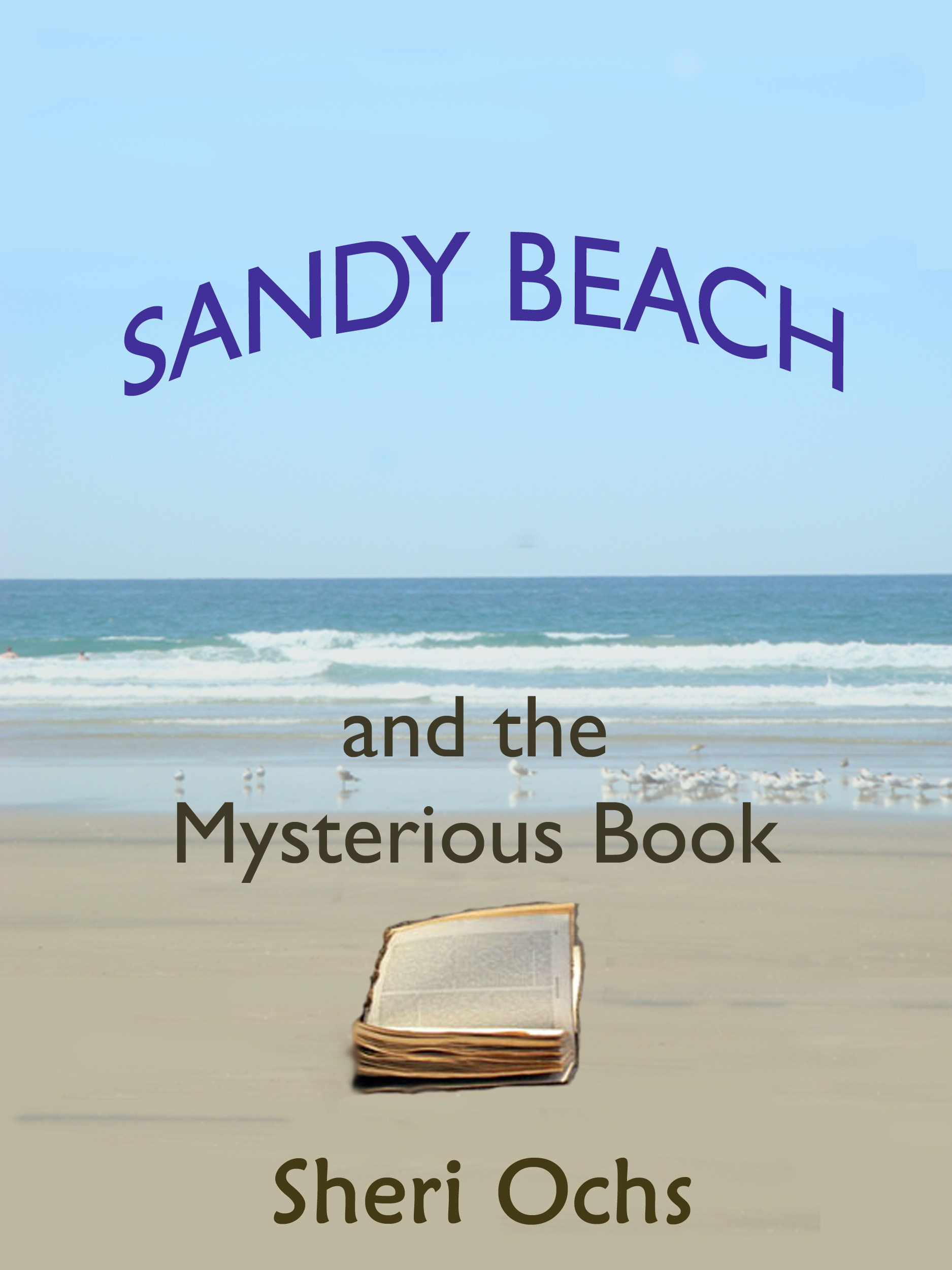 Sandy Beach and the Mysterious Book