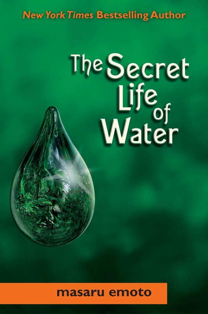 The Secret Life of Water By: Masaru Emoto