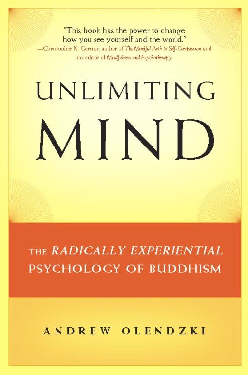 Unlimiting Mind By: Andrew  Olendzki