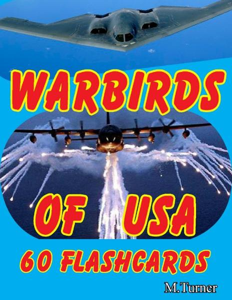Warbirds of USA 60 Flashcards