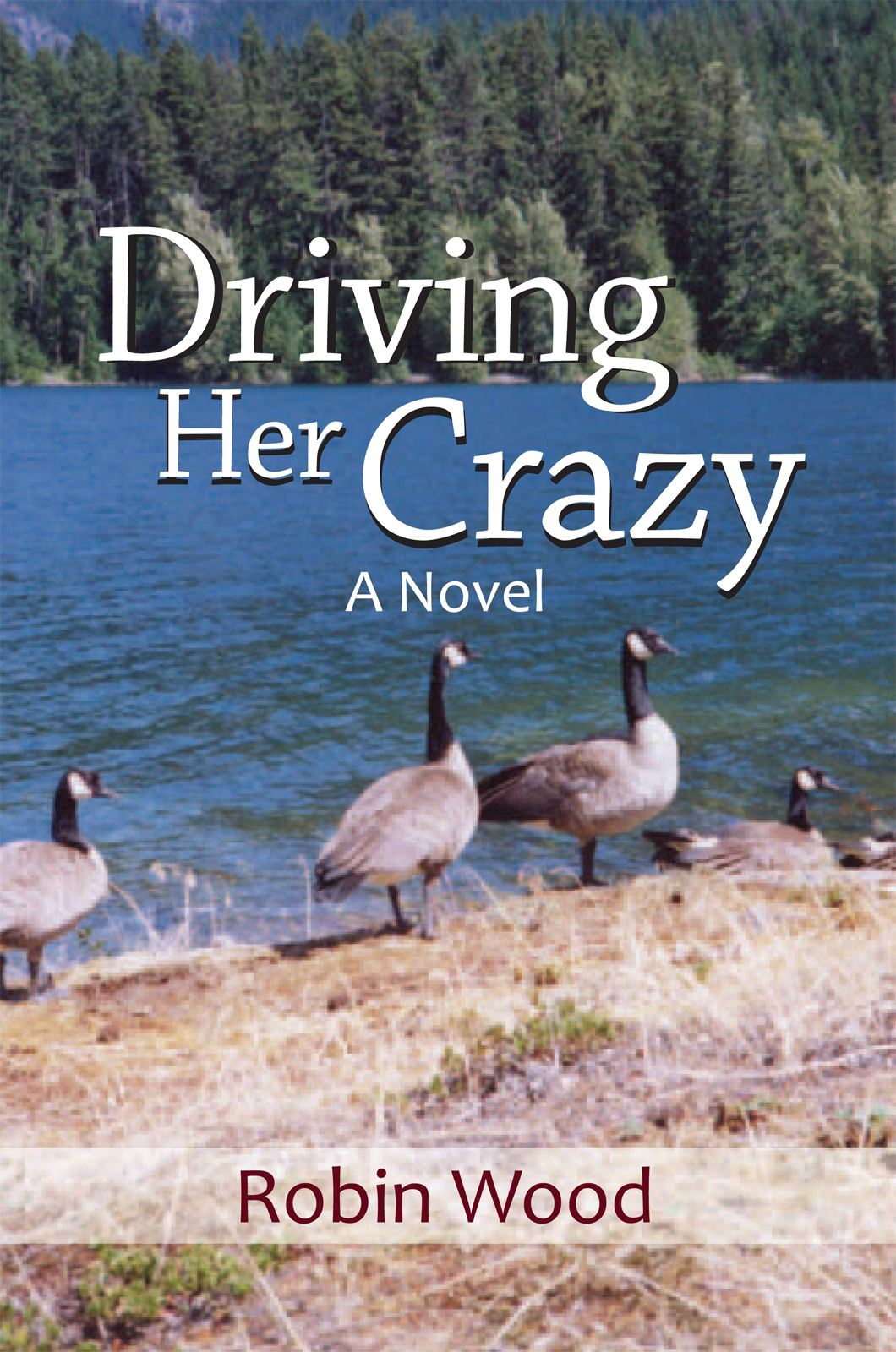 Driving Her Crazy By: Robin Wood