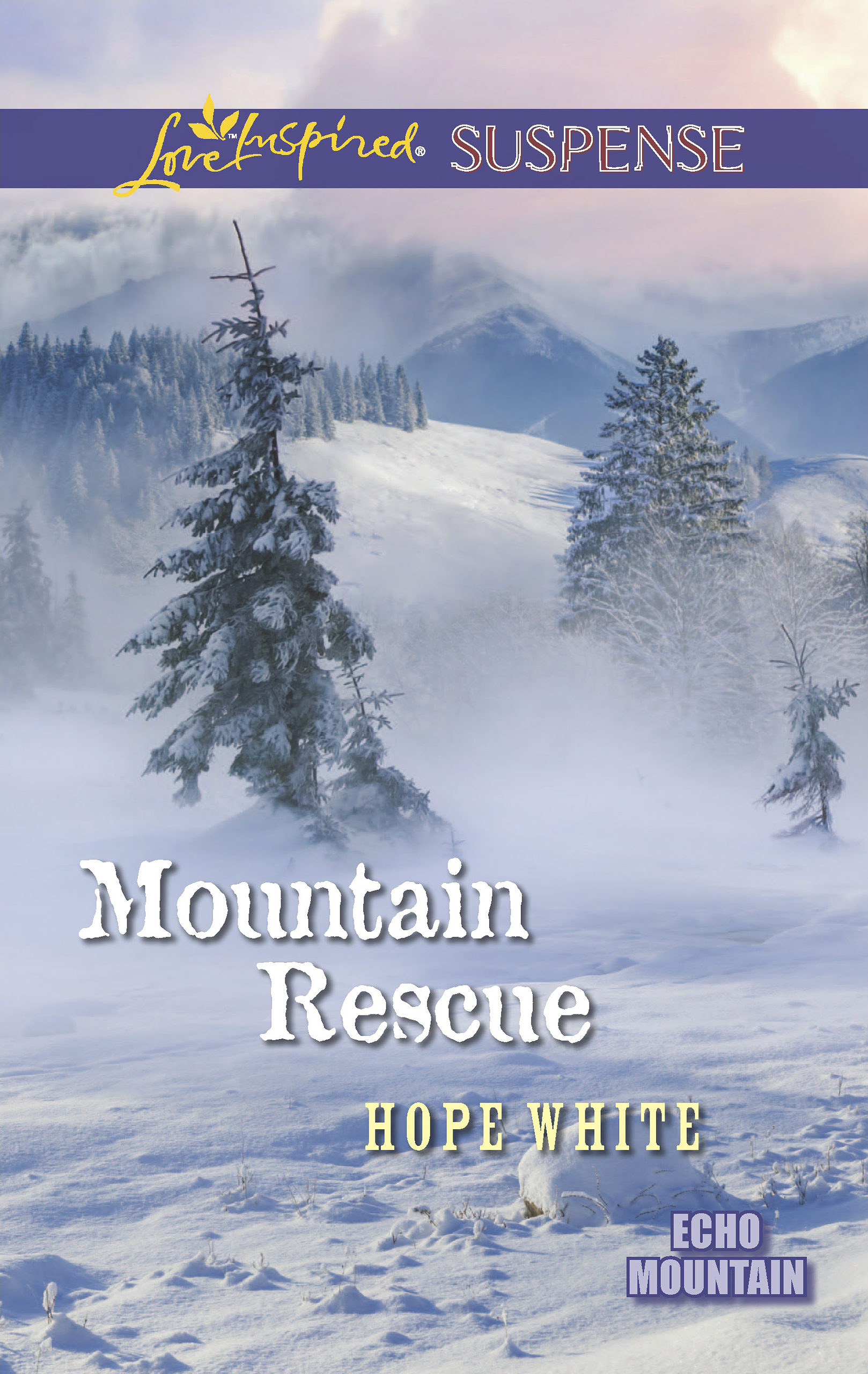 Mountain Rescue (Mills & Boon Love Inspired Suspense) (Echo Mountain - Book 1)