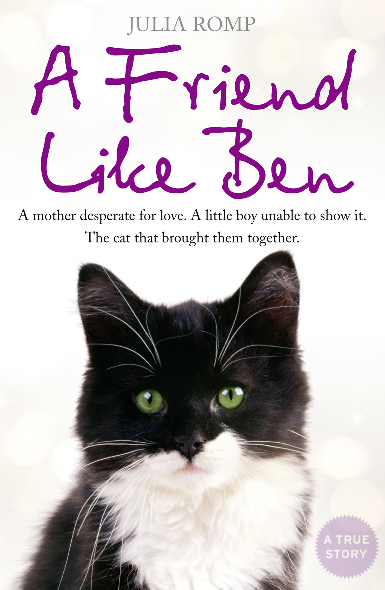 A Friend Like Ben: The cat that came home for Christmas