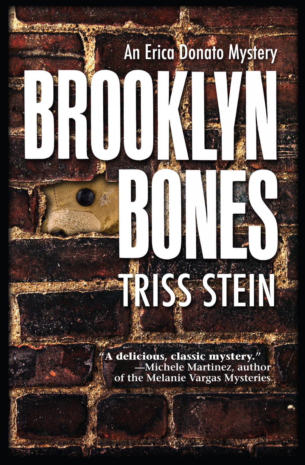 Brooklyn Bones By: Triss Stein