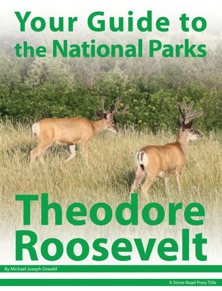 Your Guide to Theodore Roosevelt National Park