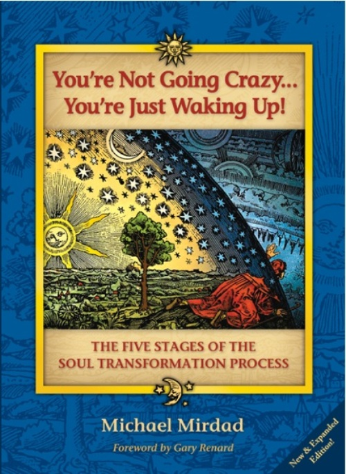"You""re Not Going Crazy . . . You""re Just Waking Up!: The Five Stages of the Soul Transformation Process"
