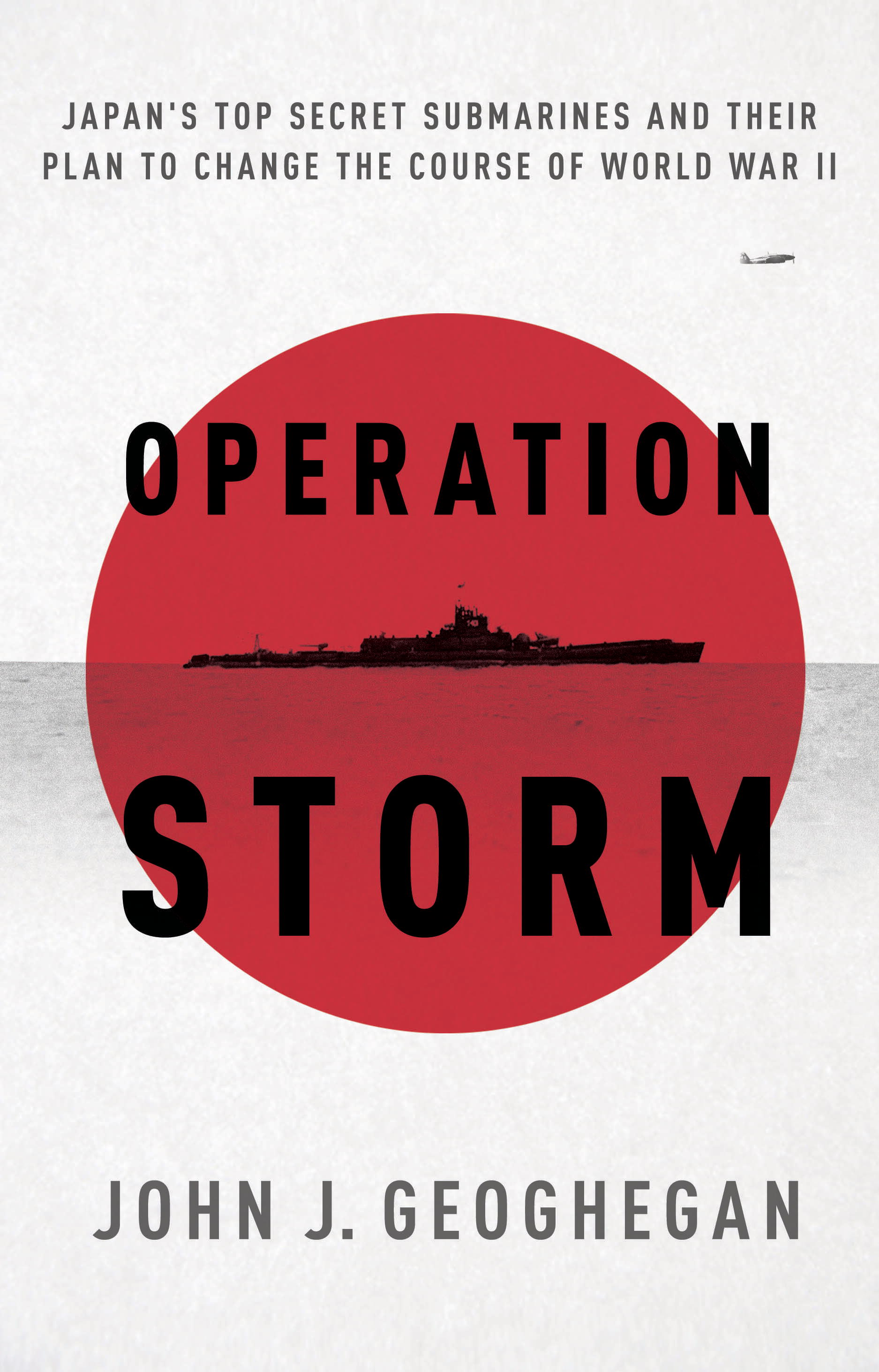Operation Storm By: John Geoghegan