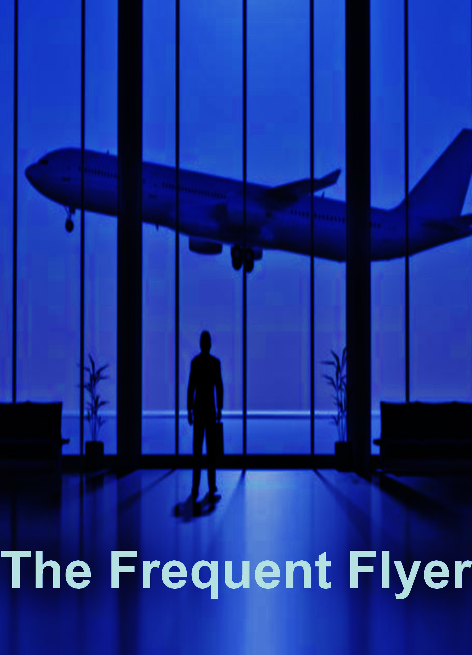 The Frequent Flyer (for fans of books as diverse as The Lovely Bones, Life of Pi, The Great Gatsby, Haruki Murakami, Cloud Atlas, The Alchemist, Waiting for Godot, The Time Traveler's Wife, Herman Hesse)