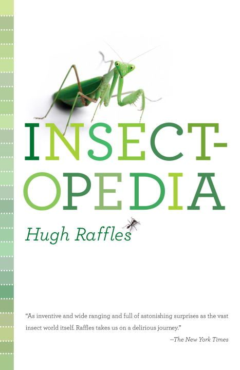 Insectopedia By: Hugh Raffles