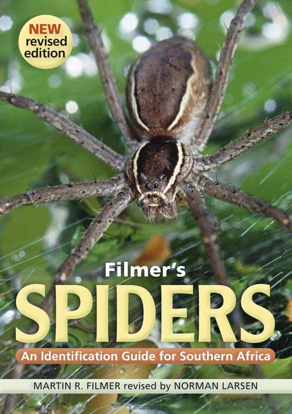 Filmer's Spiders An Identification Guide for Southern Africa
