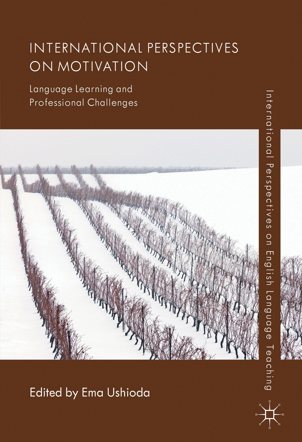 International Perspectives on Motivation Language Learning and Professional Challenges