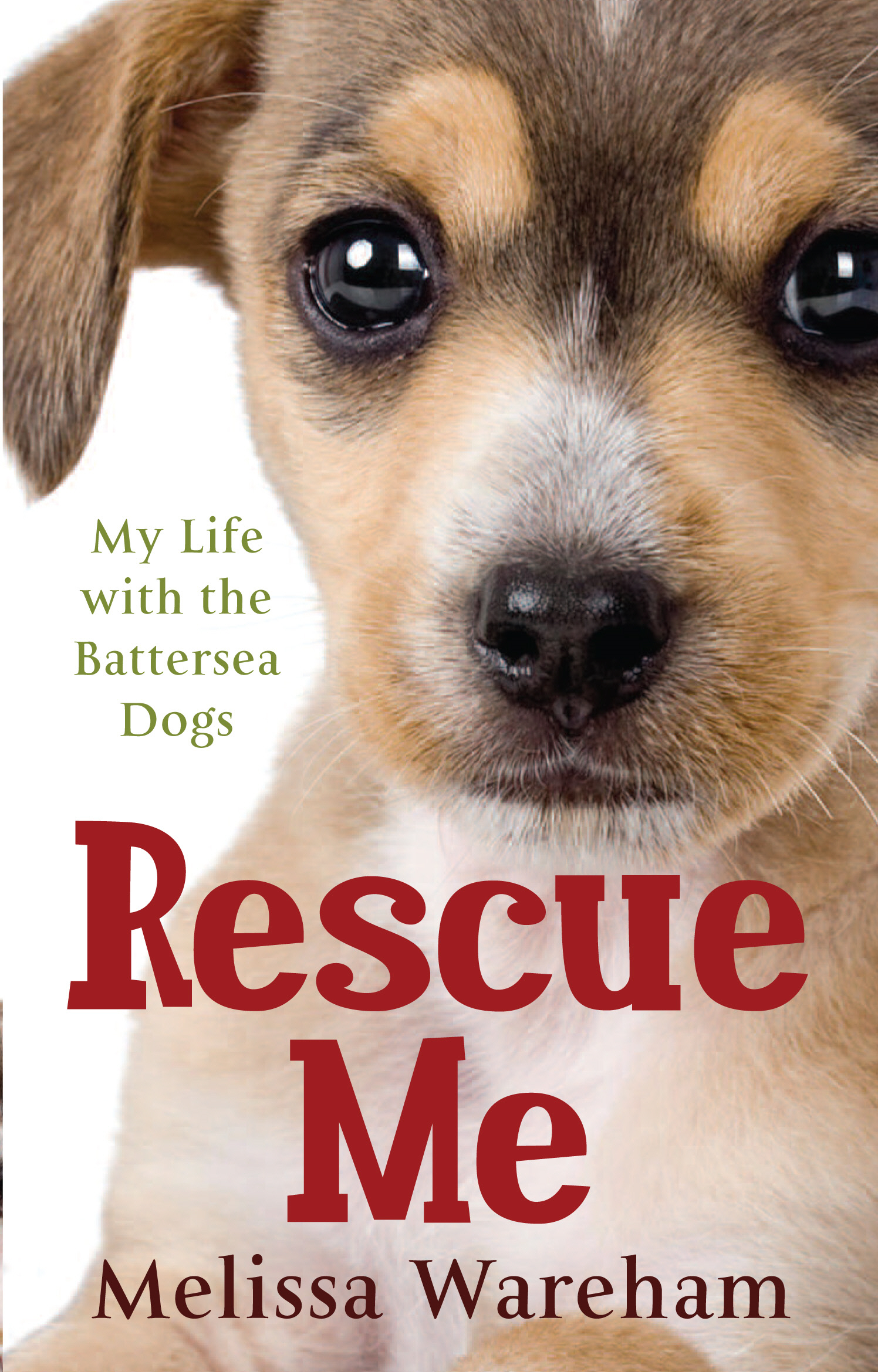 Rescue Me My Life with the Battersea Dogs