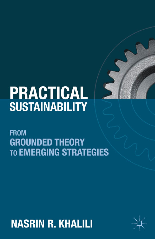 Practical Sustainability From Grounded Theory to Emerging Strategies