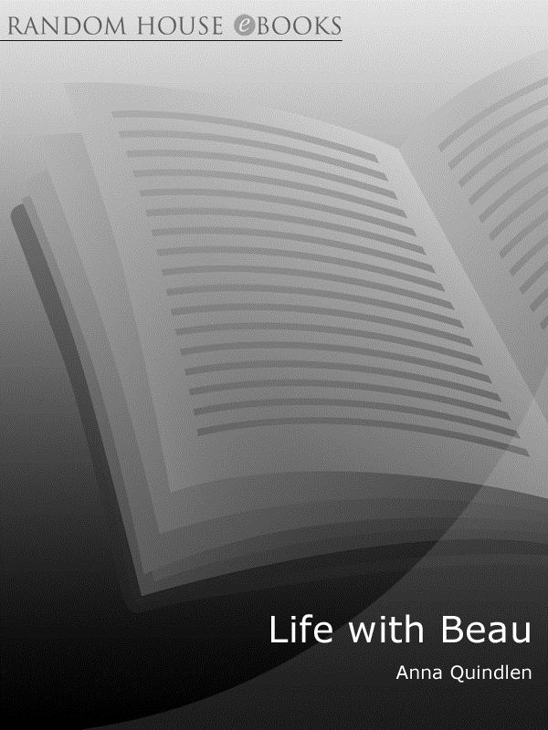 Life with Beau A Tale of a Dog and His Family