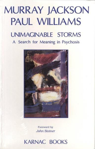 Unimaginable Storms: A Search for Meaning in Psychosis