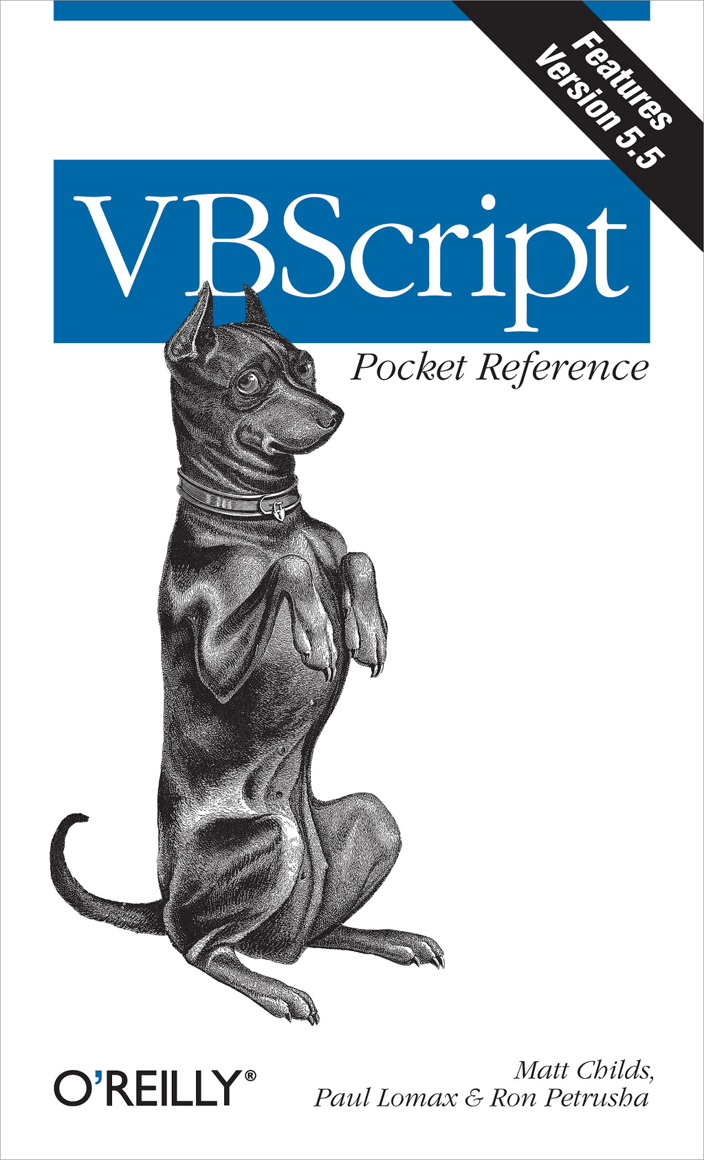 VBScript Pocket Reference