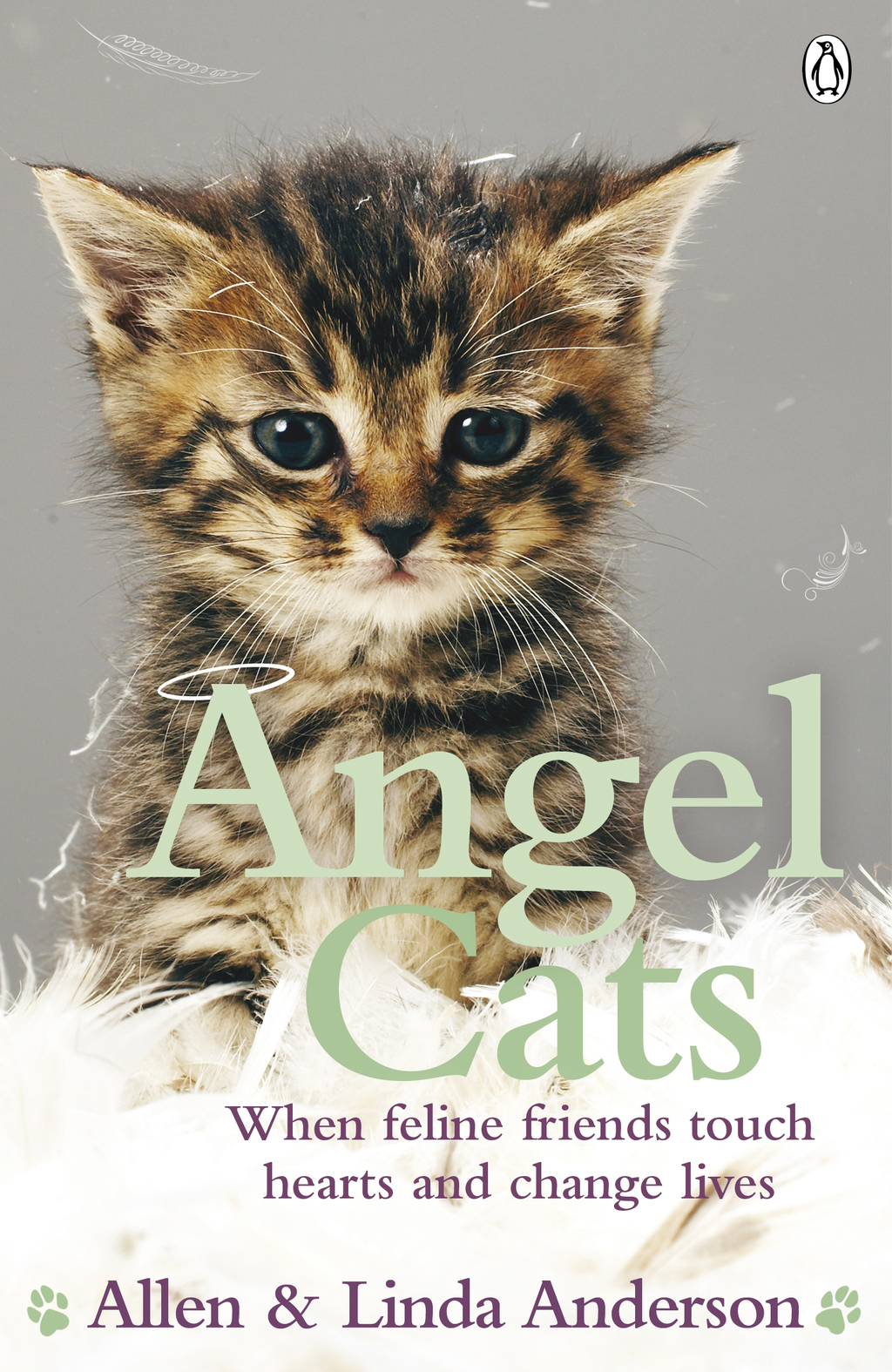 Angel Cats When feline friends touch hearts and change lives