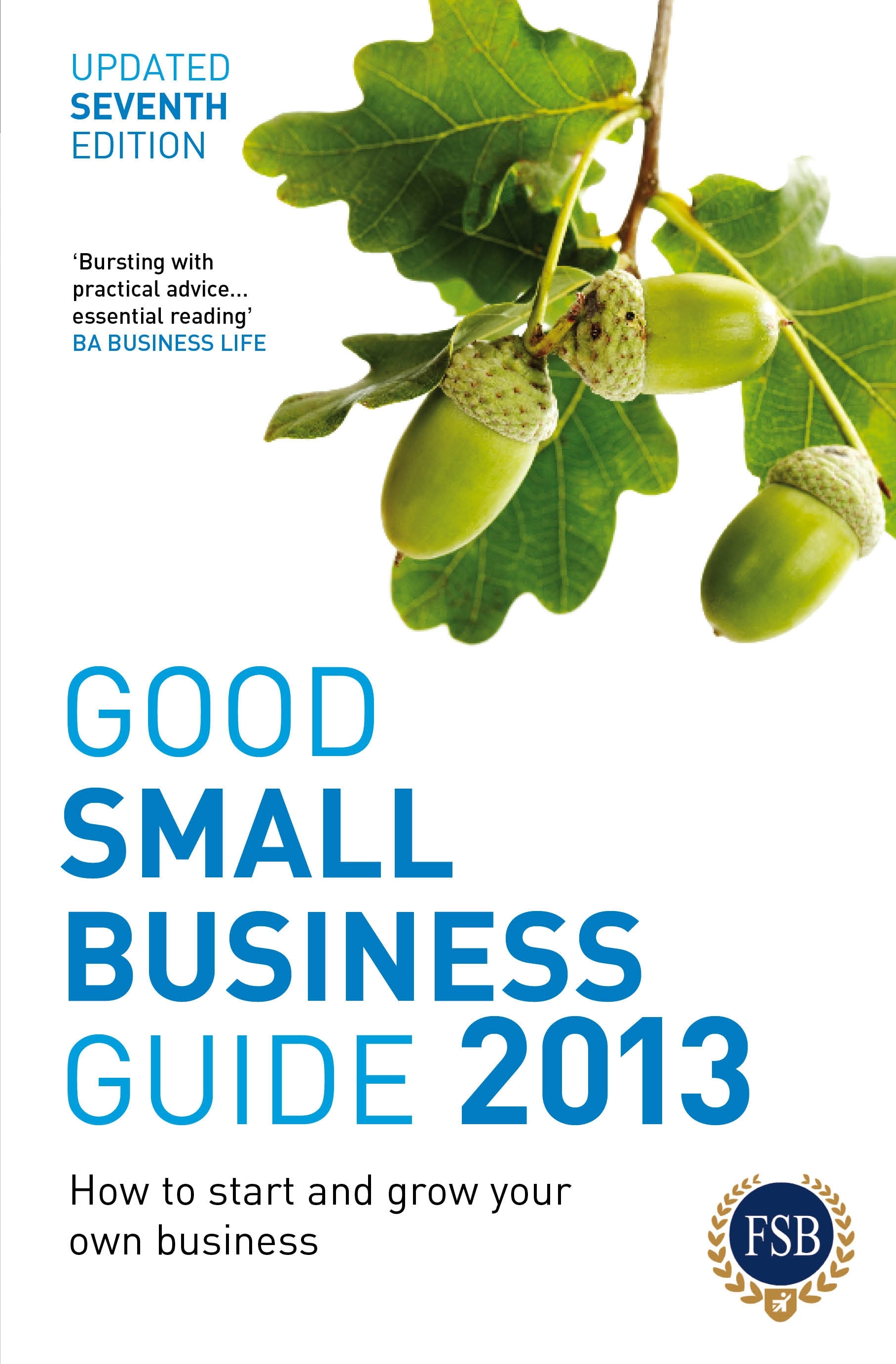 Good Small Business Guide 2013,  7th Edition How to start and grow your own business