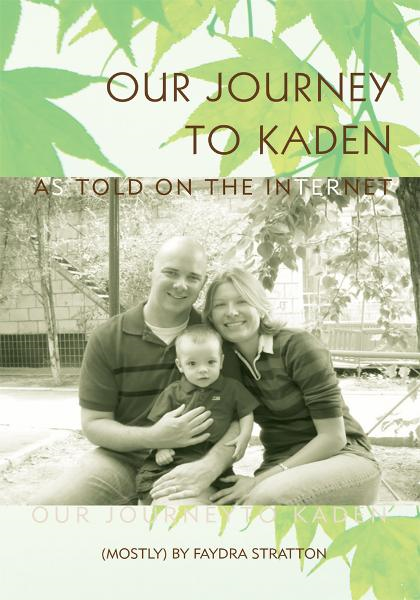 Our Journey to Kaden By: Faydra Stratton