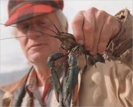 A Beginners Guide to Crayfish Farming