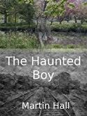 download The Haunted Boy book