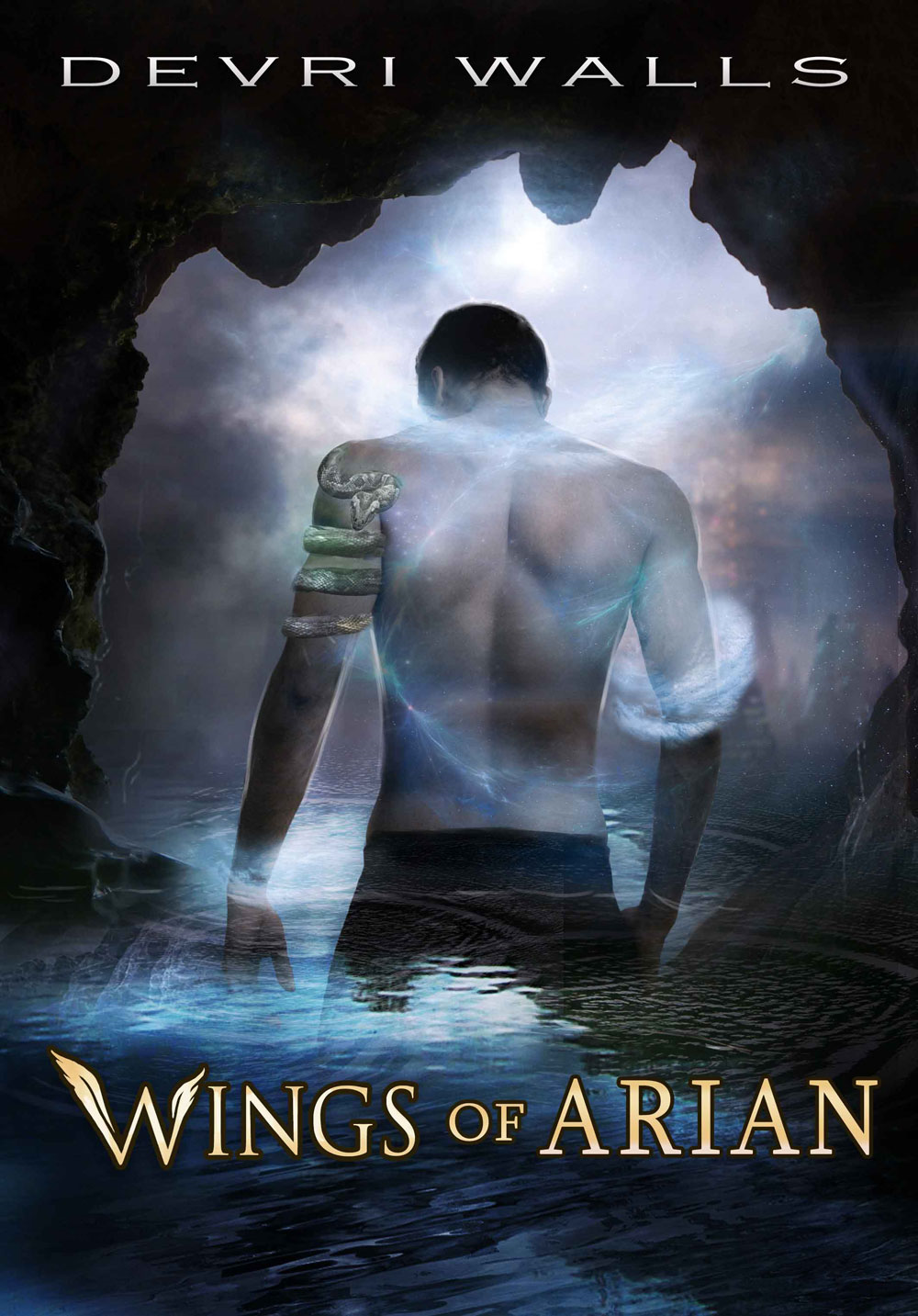 Wings of Arian (For fans of Julie Kagawa, Stephanie Meyer, J.K. Rowling, Cinda Williams Chima) By: Devri Walls