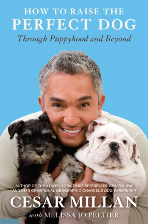 How to Raise the Perfect Dog By: Cesar Millan,Melissa Jo Peltier
