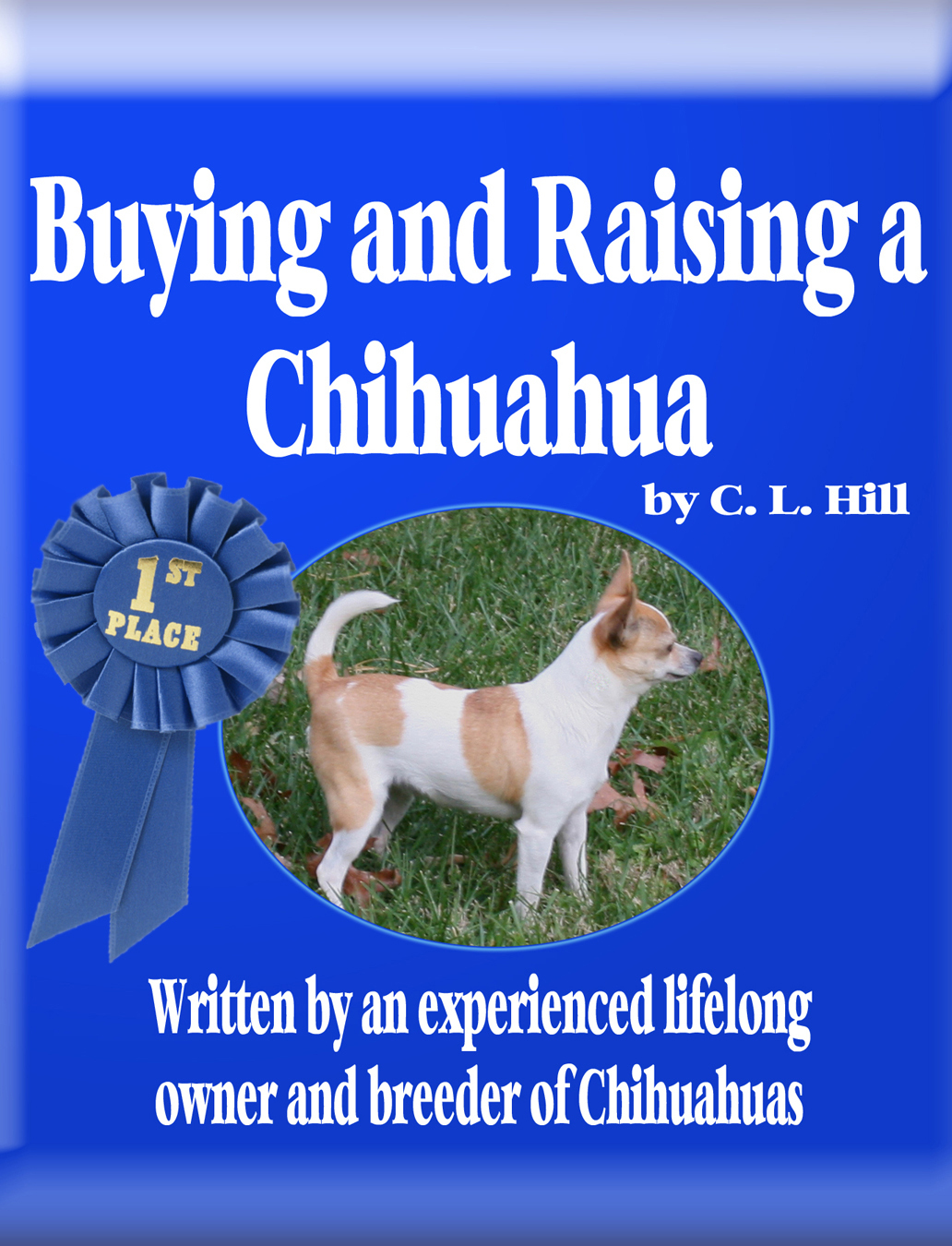 Buying and Raising a Chihuahua