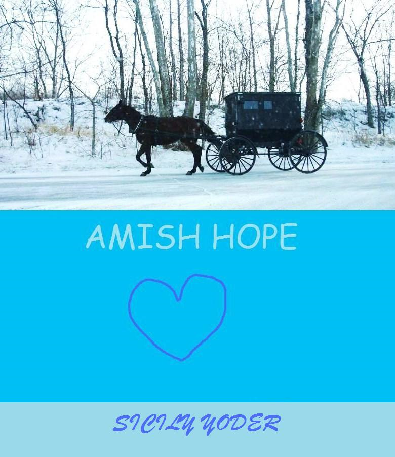 Amish Hope( An Amish Fiction Book)