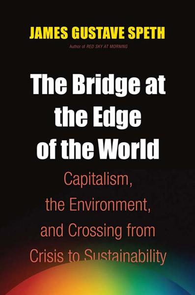 The Bridge at the Edge of the World: Capitalism, the Environment, and Crossing from Crisis to Sustainability